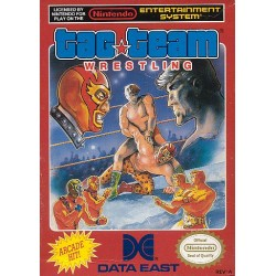 Tag Team Wrestling (NES, 1986)